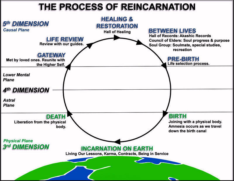 Reincarnation: The Definitive Introductory Guide to The